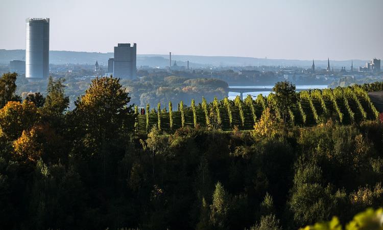 Bonn, Skyline mit Hochhäusern
